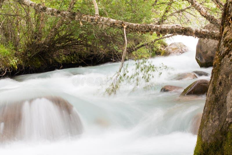 Vatten i bergfloden arkivfoto