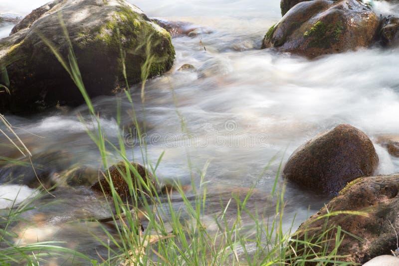 Vatten i bergfloden royaltyfria foton