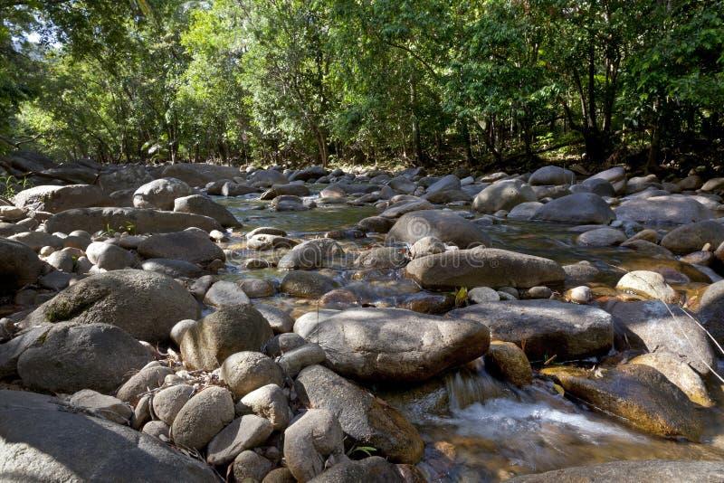 Vatten i den Finch Hatton klyftan, Queensland, Australien arkivfoton