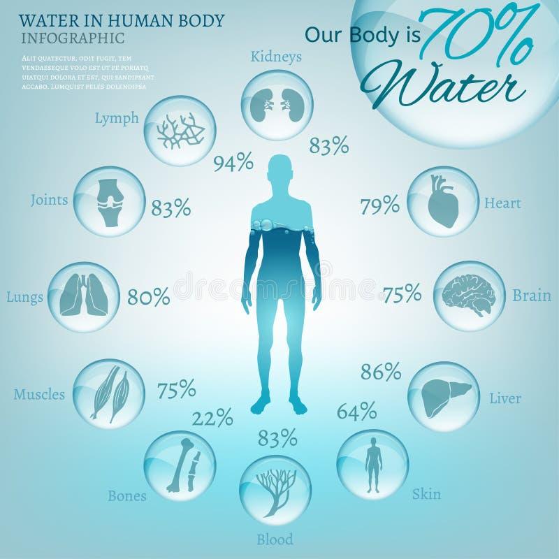 Vatten i kropp stock illustrationer