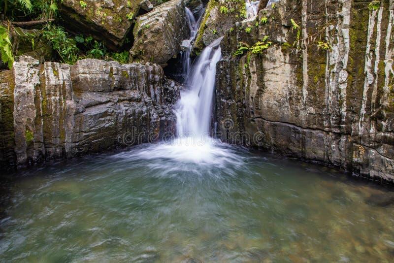 Vatten i vandringen till Juan Diego Falls royaltyfri foto