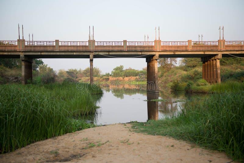 Vatten jord, vegetation, bro royaltyfria bilder