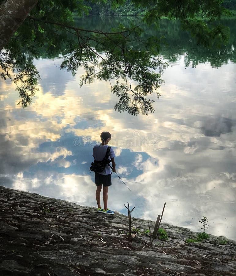 Vatten träd, himmel, natur