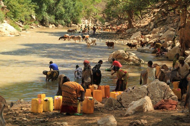 Vatten: vätskeguld men inte vatten color-1 fotografering för bildbyråer