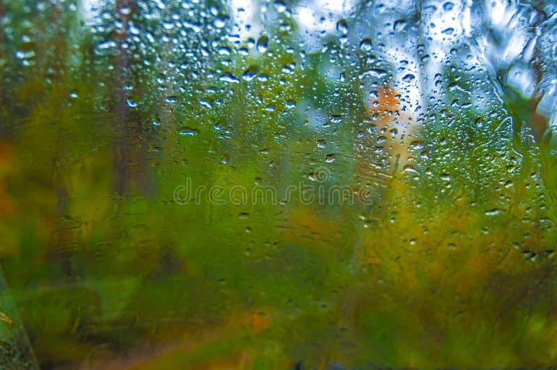 Vattenblåttdroppar av regn på fönster Suddighetshöstskog i bakgrund Höstligt regnigt mörkt landskap royaltyfri bild