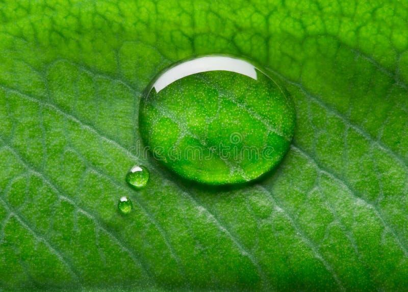 Vattenbubblasamtal arkivfoto
