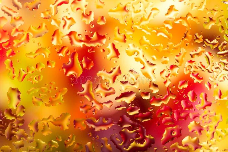 Vattendroppar på exponeringsglas med färgrik bakgrund royaltyfria bilder