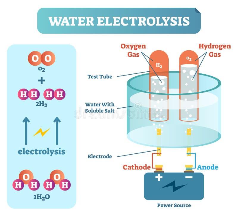 Vattenelektrolysprocess, vetenskapligt kemidiagram, bildande affisch för vektorillustration vektor illustrationer