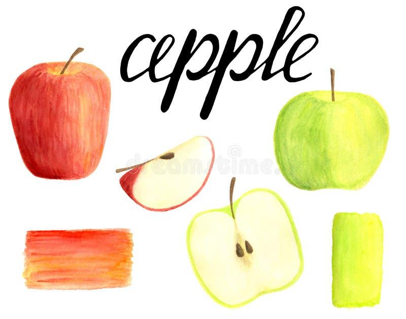 Vattenfärgäpplen ställde in med att märka kalligrafi isolerat på vit bakgrund Röda för hand utdragna och gröna frukter som skivas stock illustrationer