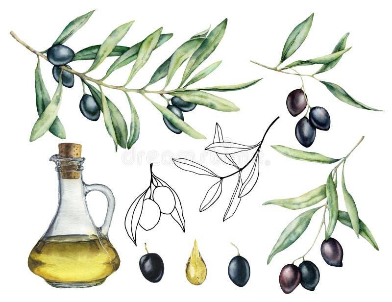 Vattenfärg och att skissa uppsättningen med oliv, filialen och flaskan med olja Handen målade illustrationen med olivgröna bär oc royaltyfri illustrationer
