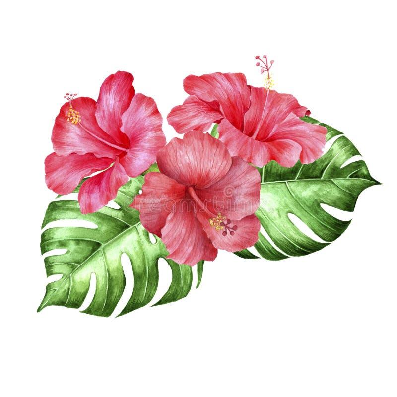 Vattenfärg som drar tropisk blom- sammansättning stock illustrationer