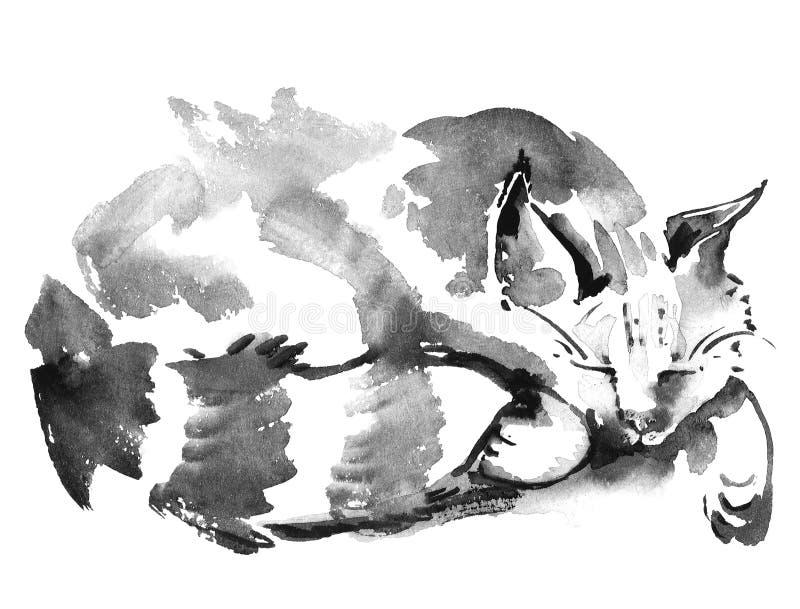 Vattenfärg som sover katten vektor illustrationer