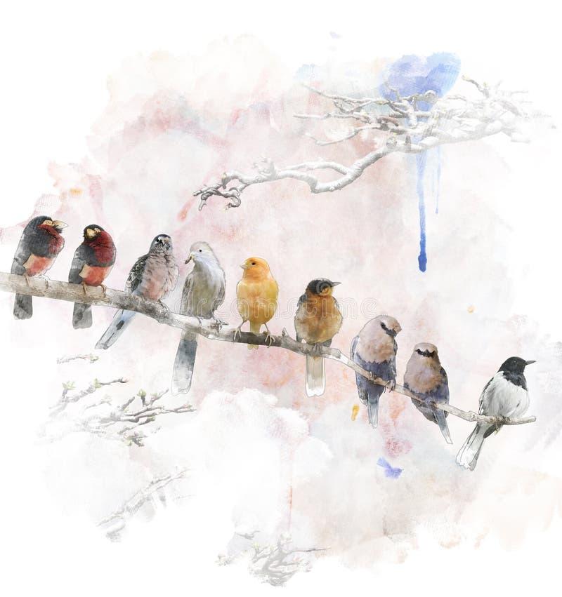 Vattenfärgbild av att sätta sig fåglar royaltyfri illustrationer