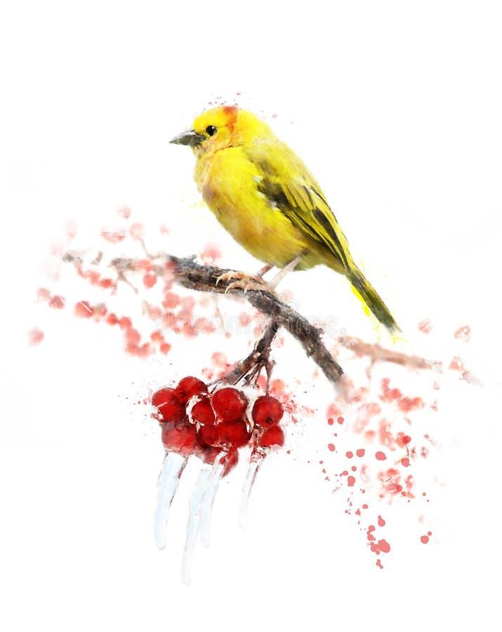 Vattenfärgbild av den gula fågeln royaltyfri illustrationer