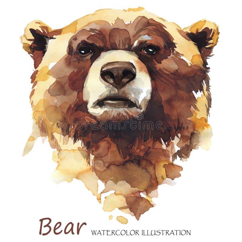 Vattenfärgbjörn på den vita bakgrunden skogdjur royaltyfri illustrationer