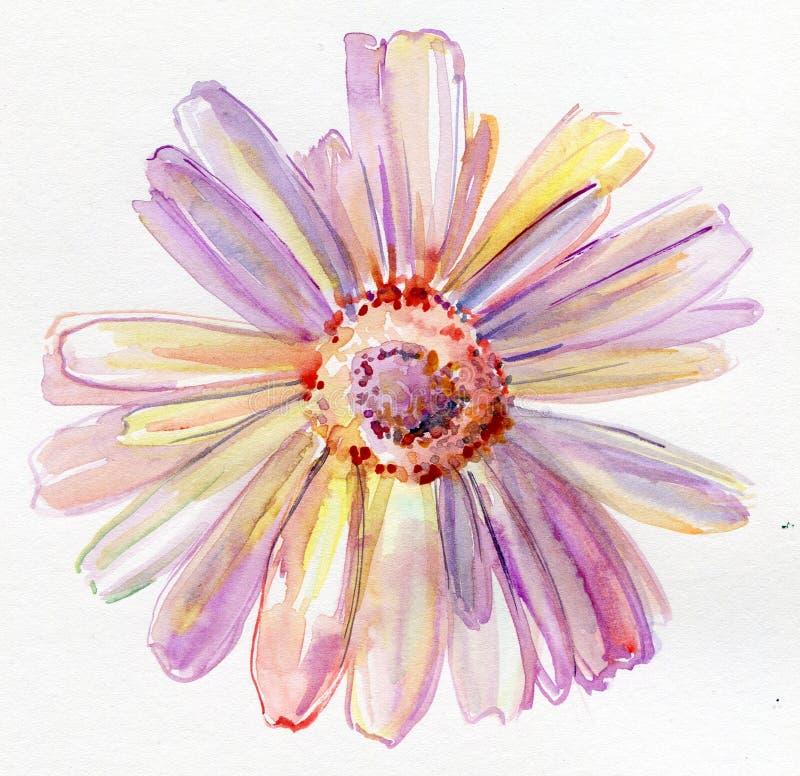 Vattenfärgblomma royaltyfri illustrationer