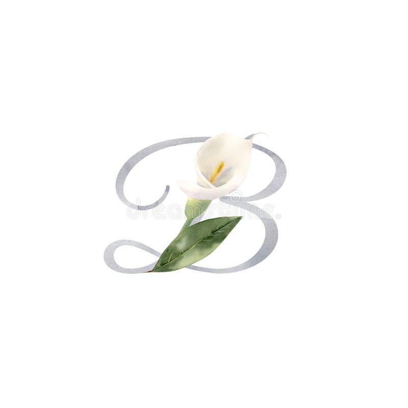 Vattenf?rgbokstav B som lilly dekoreras med den handpainted vita blomman f?r calla stock illustrationer
