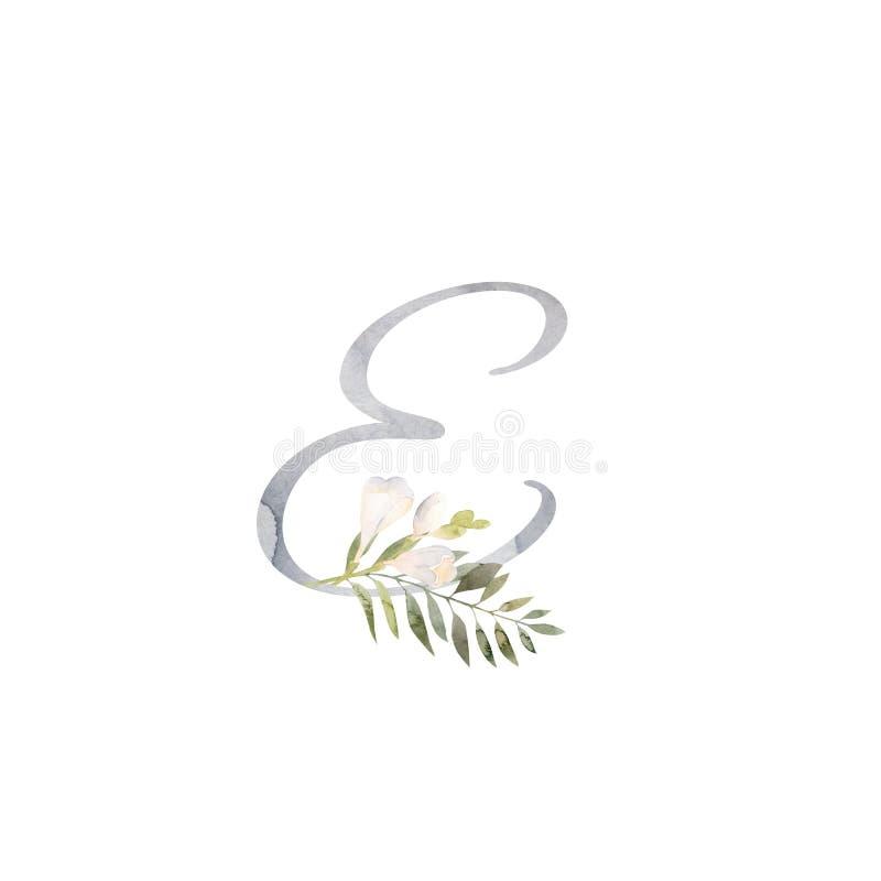Vattenf?rgbokstav E som dekoreras med handpainted vit freesiablommagr?nska vektor illustrationer