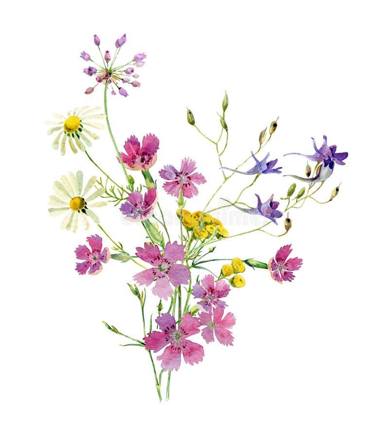 Vattenfärgbukett av lösa blommor av tusenskönor, lösa nejlikor och blåa blommor vektor illustrationer