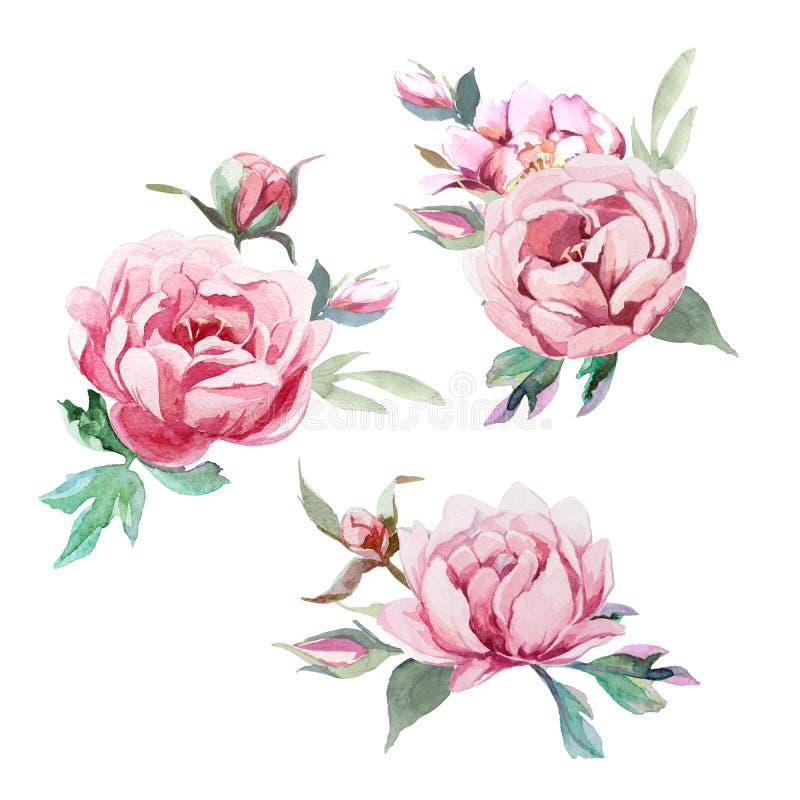 Vattenfärgbukett av pion- och blosomblommor att isolera i vit bakgrund för att gifta sig, inbjudan, valentinkort och tryck vektor illustrationer