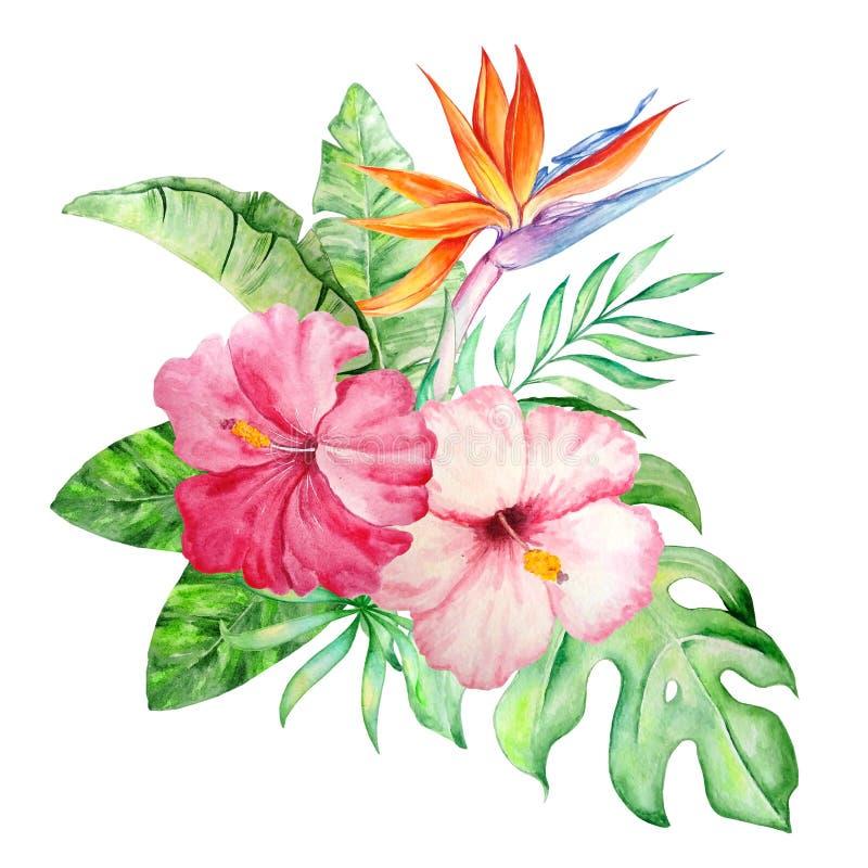 Vattenfärgbukett av tropiska blommor stock illustrationer