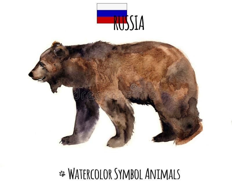 Vattenfärgdjur royaltyfria bilder