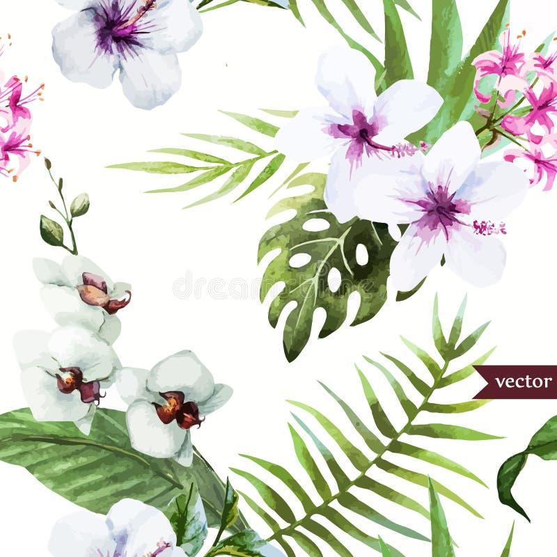 Vattenfärgen hibiskusen, orkidén, vit, gömma i handflatan, tropiskt, modellen, bakgrund, tapet royaltyfri illustrationer