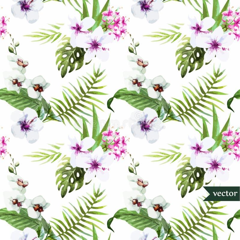Vattenfärgen hibiskusen, orkidén, vit, gömma i handflatan, tropiskt, modellen, bakgrund, tapet vektor illustrationer
