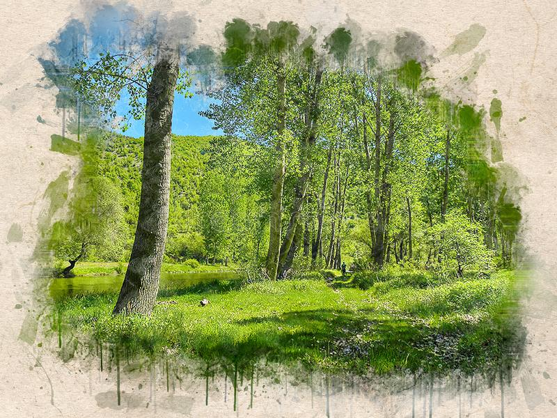 Vattenfärgen målade härliga Green River i solig skog royaltyfri illustrationer