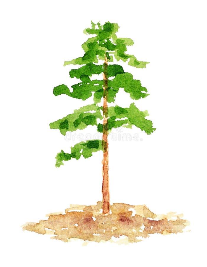 Vattenfärgen sörjer trädet, räcker utdraget och målat stock illustrationer