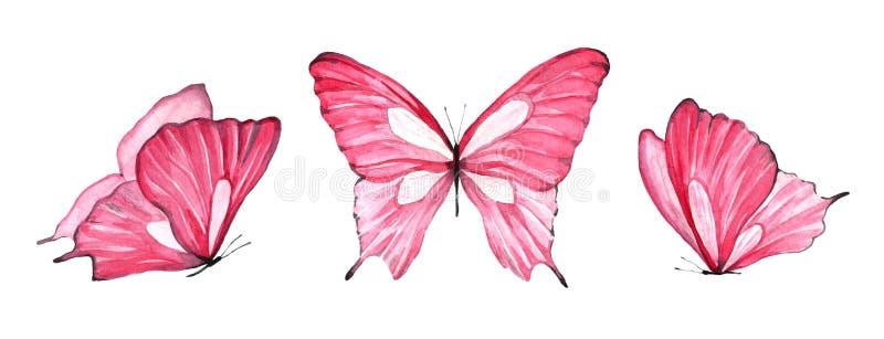 Vattenfärgen ställde in av den rosa fjärilen som isolerades på vit bakgrund stock illustrationer