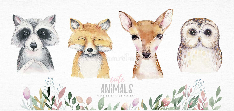 Vattenfärgen ställde in av isolerat gulligt för skog tecknade filmen behandla som ett barn det räv-, hjort-, tvättbjörn- och uggl royaltyfri illustrationer