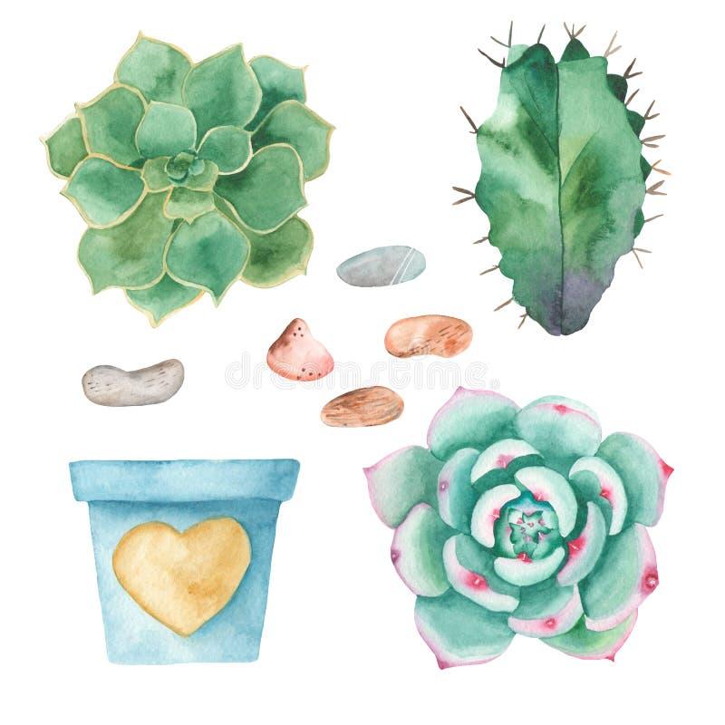 Vattenfärgen ställde in av kakturs, suckulenter, kiselstenar, blomkrukor royaltyfri illustrationer