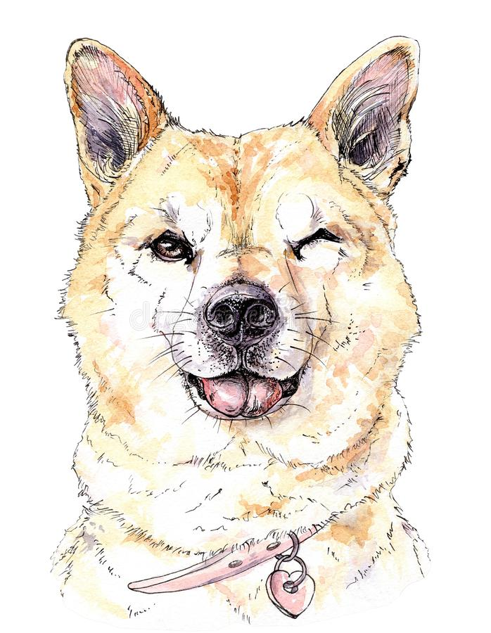 Vattenfärgen tystar ned av en röd hund blinkar med ett leende och en tunga som ut hänger stock illustrationer