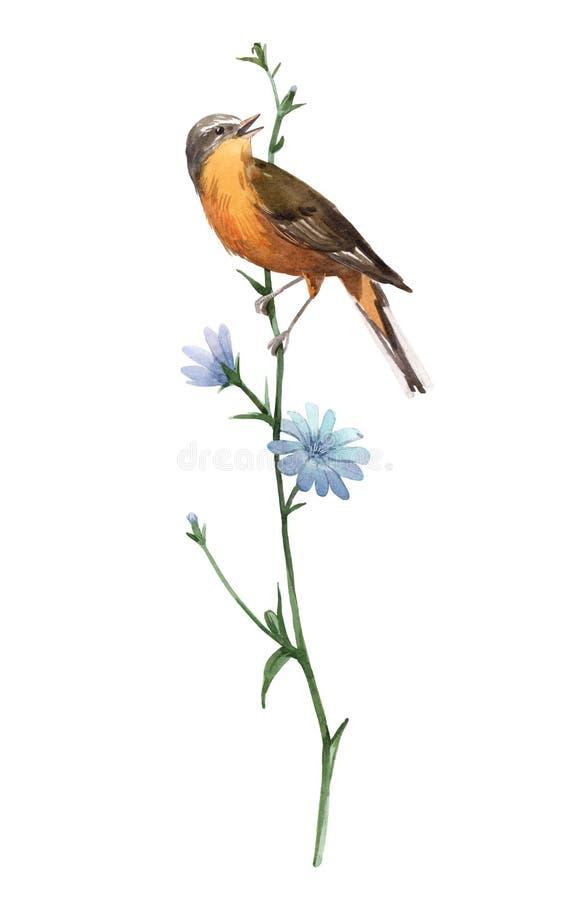 Vattenfärgfågel på blomman stock illustrationer