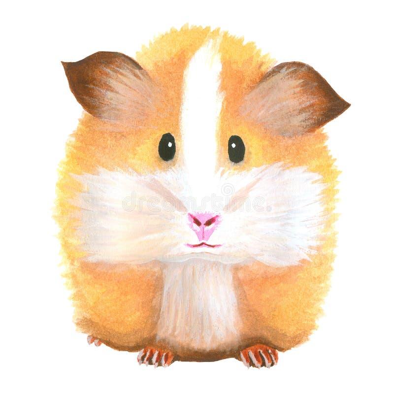 Vattenfärgförsökskanin angus rodent royaltyfri illustrationer