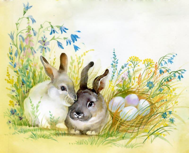 VattenfärgFaunasamling: Kanin stock illustrationer