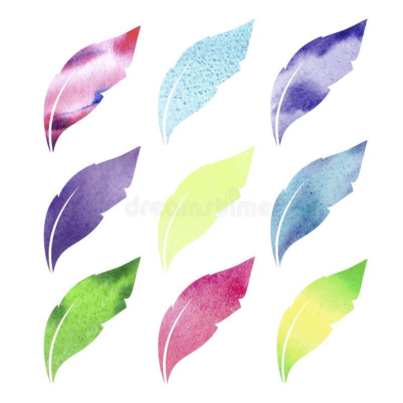 Vattenfärgfjäderuppsättning Utdragen illustration för hand med färgrika fjädrar och vit bakgrund arkivbild