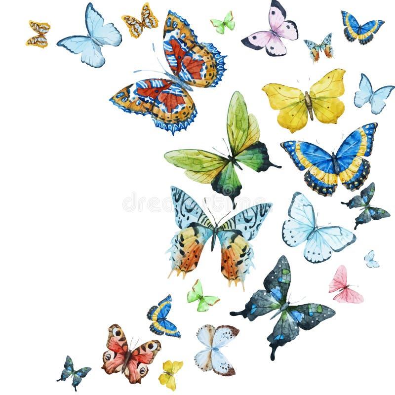 Vattenfärgfjärilar royaltyfri illustrationer