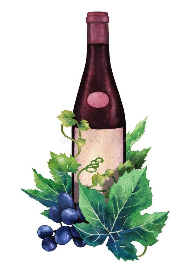 Vattenfärgflaska av rött vin som dekoreras med druvasidor och bär stock illustrationer