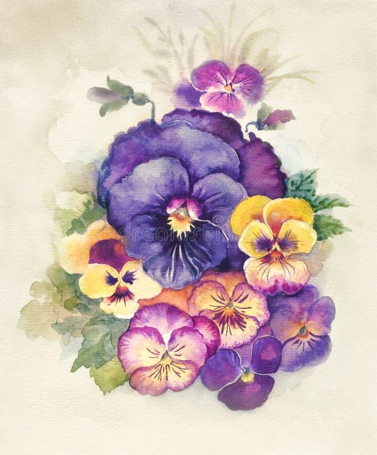 Vattenfärgflorasamling: Viola royaltyfri illustrationer