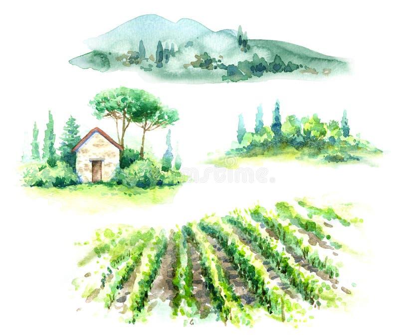 Vattenfärgfragment av den lantliga platsen med kullar, vingården och träd vektor illustrationer