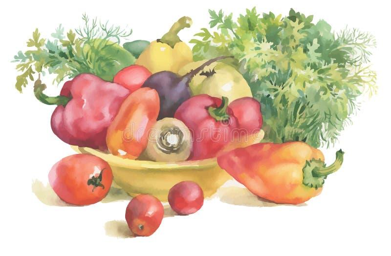 Vattenfärggrönsaker i bunken och örter som isoleras på vit royaltyfri illustrationer