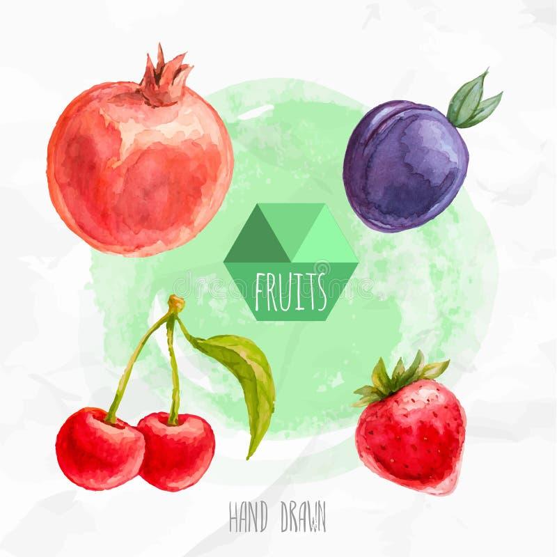 Vattenfärghanden målade körsbär, jordgubben, granatäpplet och plommonet stock illustrationer