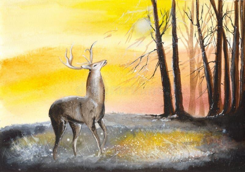 Vattenfärghjortar i skog royaltyfri illustrationer