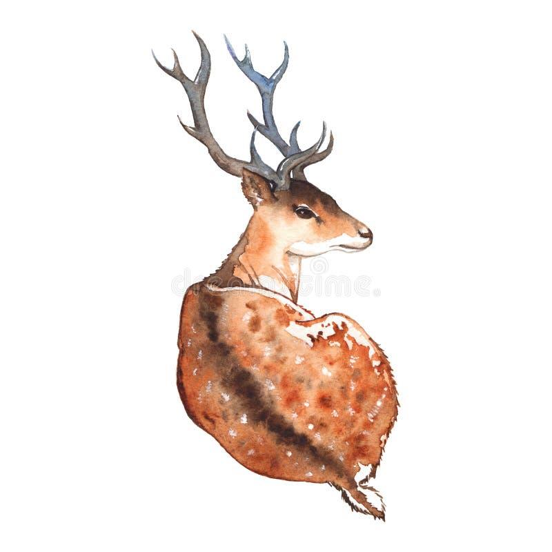 Vattenfärghjortar med hornträdjuret stock illustrationer