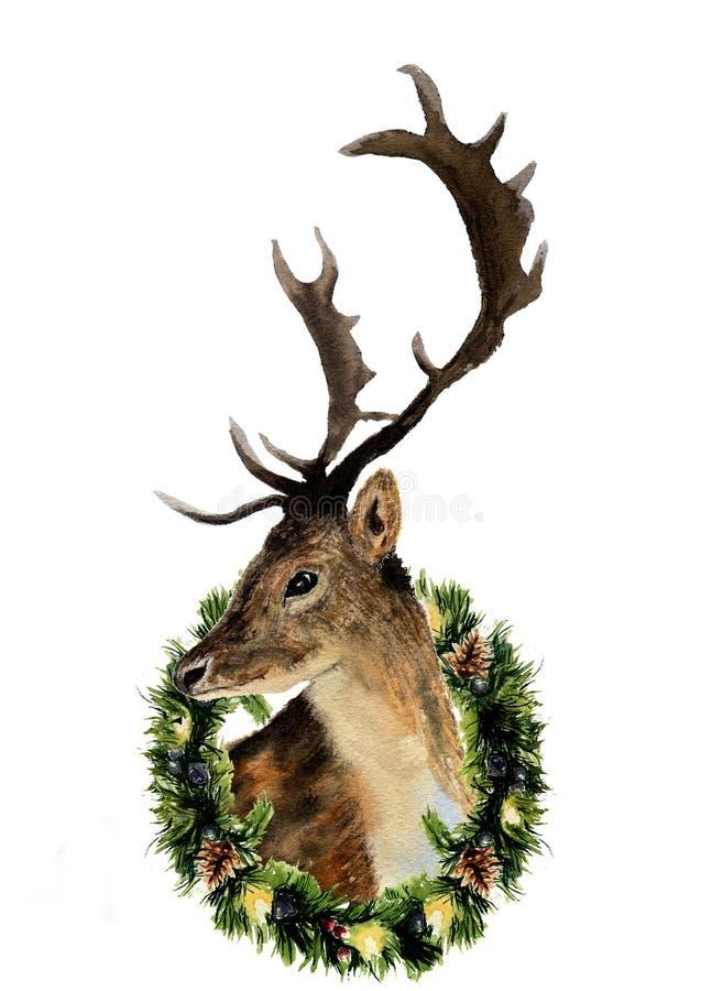 Vattenfärghjortar med julkransen som isoleras på vit bakgrund Illustration för löst djur för jul för design, tryck eller backgr vektor illustrationer