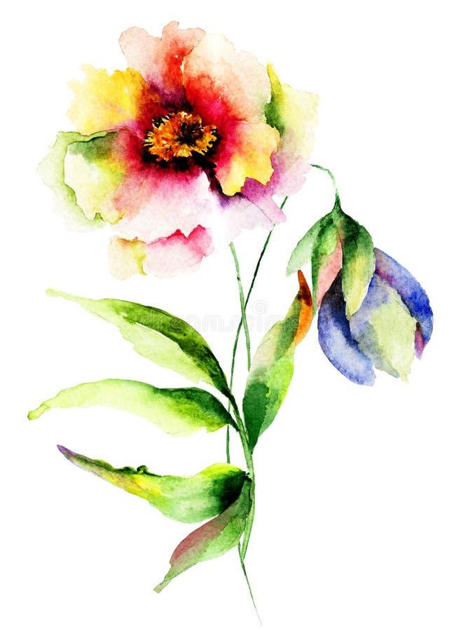 Vattenfärgillustration av blommor stock illustrationer