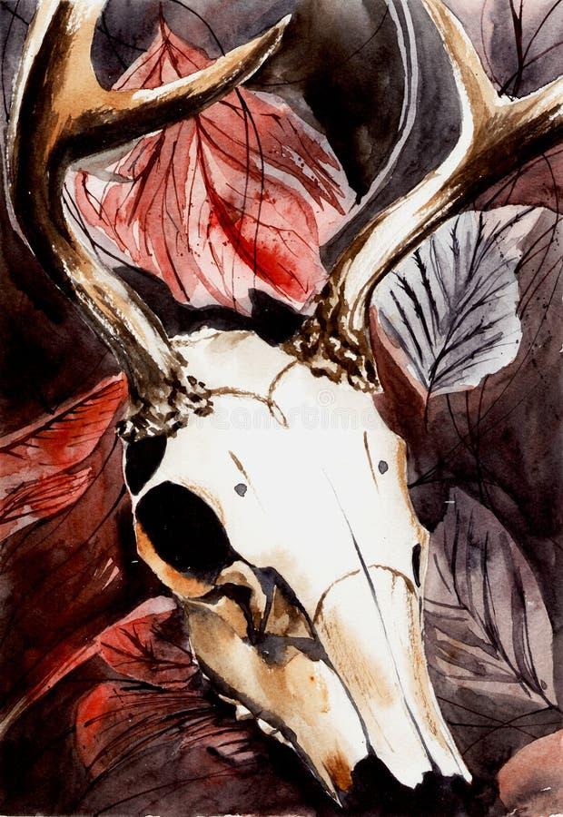 Vattenfärgillustration av den djura skallen royaltyfri illustrationer