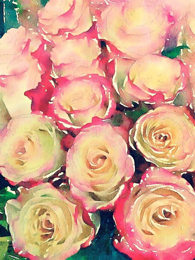Vattenfärgillustration för rosa och gula rosor vektor illustrationer